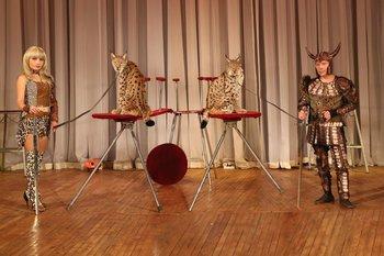 Цирковое представление «Легенды мира» — только один день в Великих Луках!