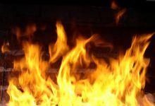 В Великих Луках горел легковой автомобиль
