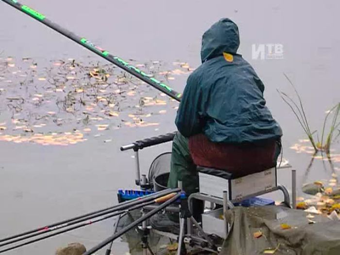 Импульс\u002DТВ: Чемпионат по рыбной ловле