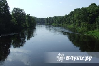 Продается дом на земельном участке(35 соток)с двумя пристройками на берегу реки Западная Двина.
