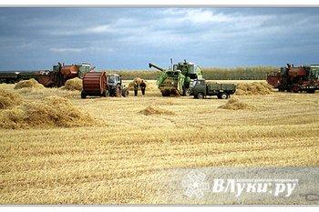 Современное, активно развивающееся сельскохозяйственное предприятие в Псковской…