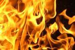В Невельском районе горел грузовой автомобиль