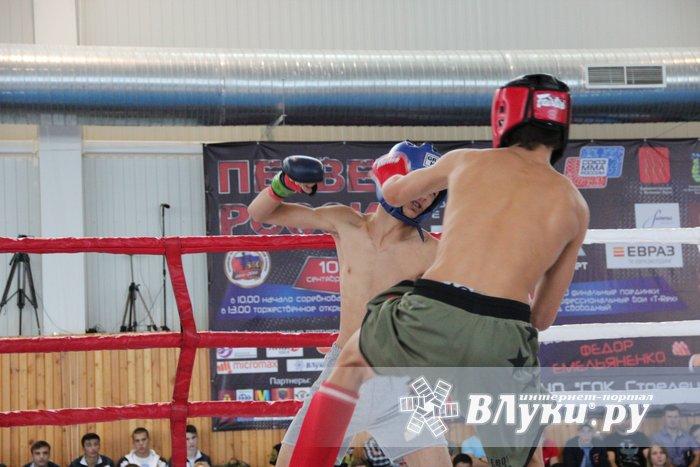 Тамбовские спортсмены завоевали 3 медали наПервенстве РФ посмешанному боевому единоборству