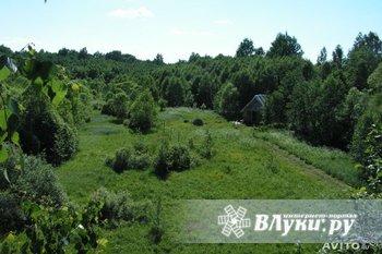 Участок 3.3 Га для дачного строительства в псковской области, есть…
