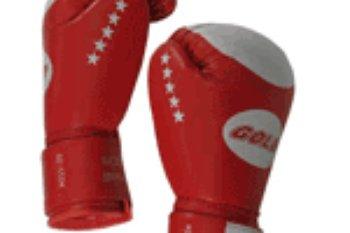 Продам спортивный инвентарь и спортивные товары для занятий боксом и единоборствами. А именно: борцовки, боксерки, чешки, получешки для художественной гимнастики,…