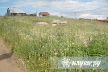 Земельный участок 15 соток Великолукский район, деревня Лазава 15 км. от города…