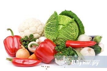 Поставляем овощи и фрукты крупным и средним оптом. Широкий ассортимент фруктов…