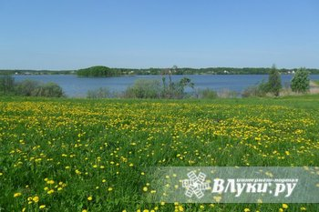 Дом в деревне, 6*10, 50 м от озера Пореченское, баня, сараи, колодец, 50 соток…