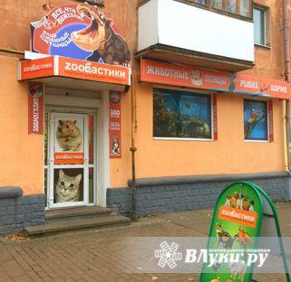Магазин «Zooбастики», ИП Игнатенков Г.Н. : Магазин «Zooбастики», ИП Игнатенков Г.Н. : Великие Луки