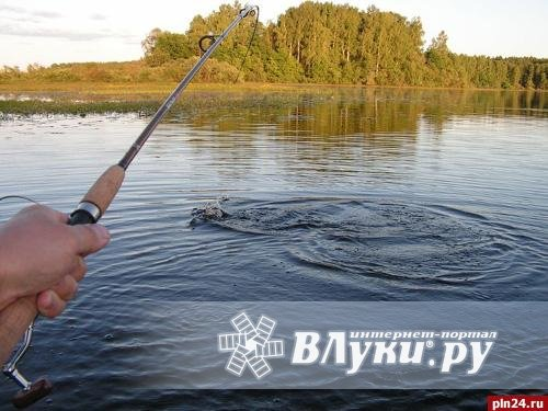 форум рыбаков тараза в контакте