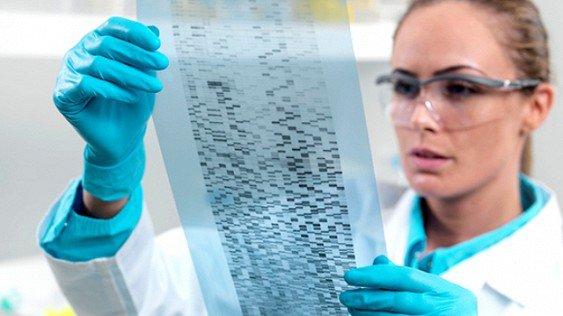Генетики установили родственные связи у83% граждан России