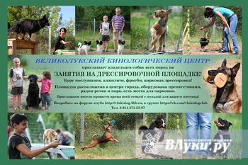 Великолукский кинологический центр приглашает владельцев собак всех пород и…