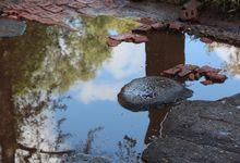 Великие Луки после дождичка в четверг (ФОТО)