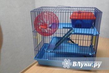 Клетка для грызунов.   Новая,  3 этажа,колесо  и домик входят в комплект.…