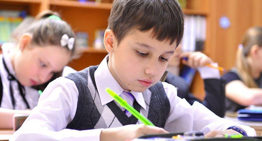 Втысяче донских школ пятиклассники напишут Всероссийские проверочные работы порусскому языку