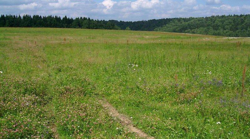 арендовать земельный участок