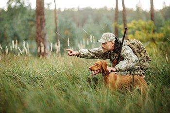 Вниманию охотников Псковской области
