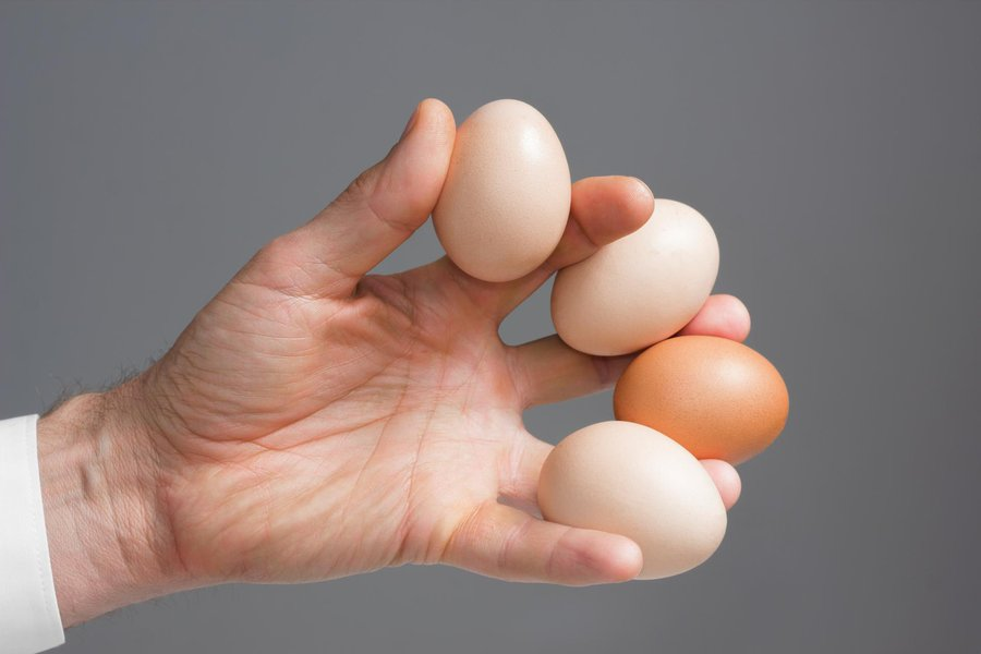 Картинка яйцо в руке